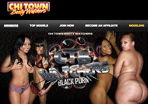 This one is among the most exciting pay porn websites if you're into great adult interracial scenes