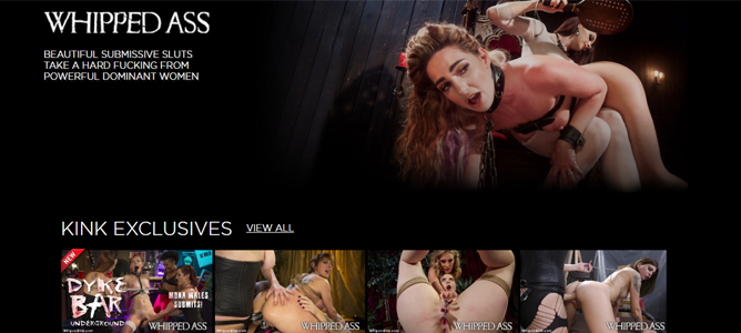 top bdsm porn site powered by the kink network