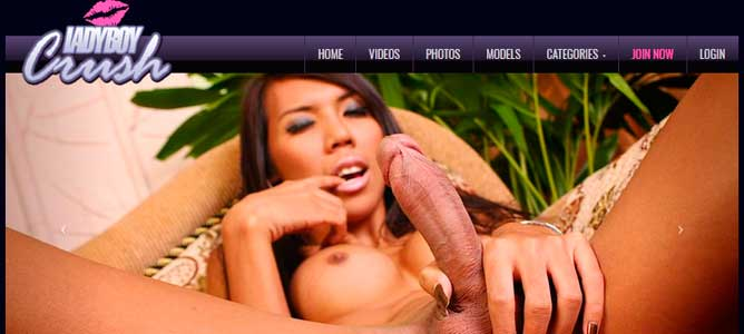 Nice pay sex website for the lovers of ladyboy porn scenes