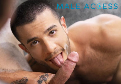 Popular hd adult network with the hottest gay porn material